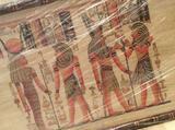 Египетский папирус в раме (новый)